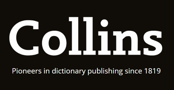 enigma definition and meaning collins english dictionary